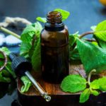What Makes Menthol and Camphor Such Great, Natural Pain Relievers? on coppergel.com